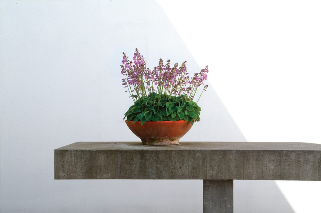 UK-home-improve-5-uses-of-concrete-in-the-home