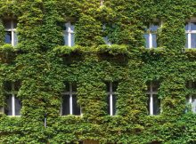 uk-home-improvement-Home-Renovations-can-be-a-Step-Toward-a-Greener-Home